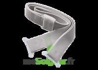 Brava Sensura Mio, Standard  à FLERS-EN-ESCREBIEUX