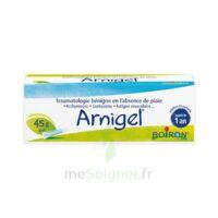 Boiron Arnigel Gel T(alumino-plastique)/45g à FLERS-EN-ESCREBIEUX